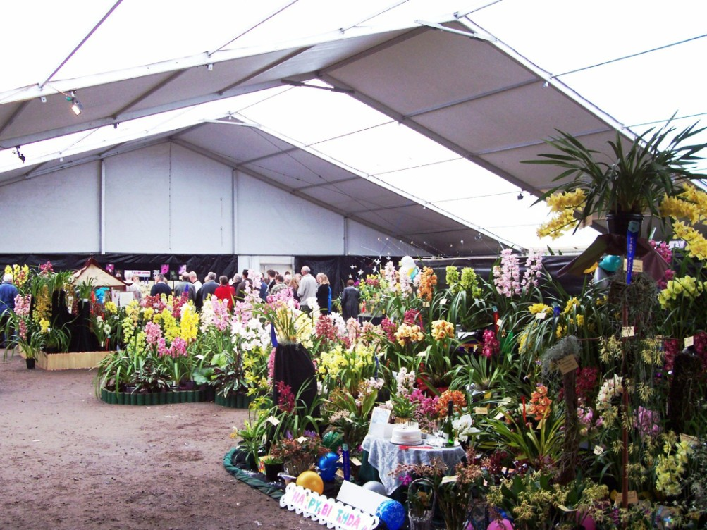 Orchid Show - Blooming Wonderful!